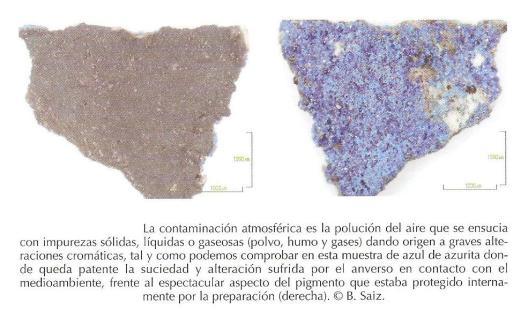 Detalle de alteración del pigmento