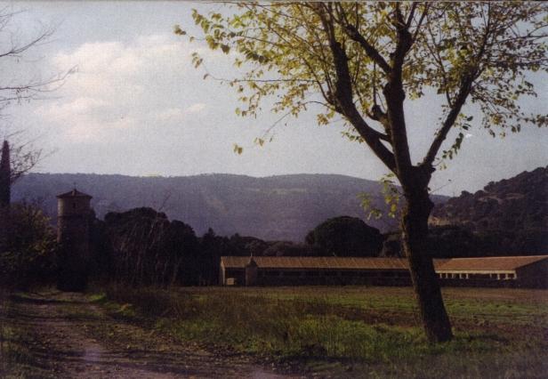 Vista de la Dehesa de El Santo.