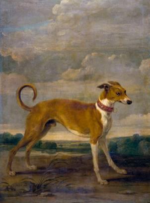 Paul de Vos: Perro. Madarid, Museo Nacional del Prado.