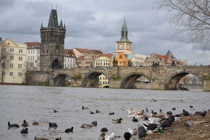 Puente de San Carlos en Praga. Foto: wikicommons.