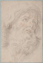 Giovanni Andrea Sirani: Cabeza de hombre barbado. Madrid, Museo del Prado.
