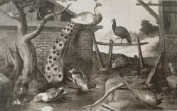 Paul de Vos, escuela de: Paisaje con pavo real y patos. Depositado por R.O en la Embajada de España en Lisboa en 1919. Desaparecido.